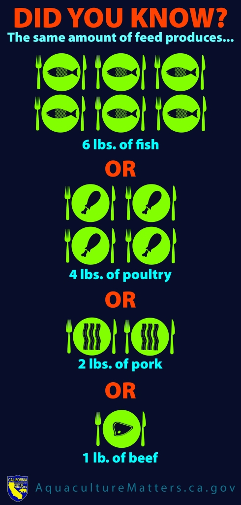 Aquaculture Comparison Infographic
