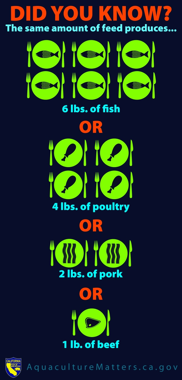 Aquaculture Comparison Infographic