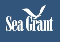logo_sg_blueback